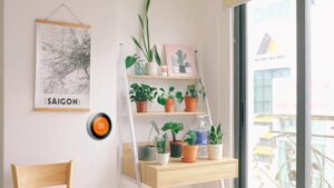 ¿Se puede instalar un termostato Nest en un apartamento?